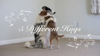 5_different_hugs_for_valentines_day