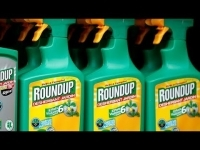 exposure_to_monsantos_roundup_chemical_up_500_over_20_yrs