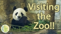 visiting_the_zoo