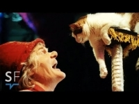 moscow_cat_theatre_-_cats_perform_in_circus_acts_full_documentary_short