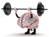 stronger_muscles_lead_to_more_highly_functioning_brains